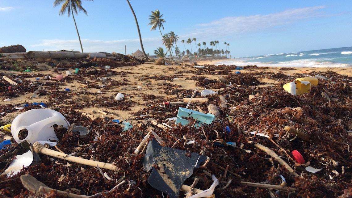 SAP quer diminuir poluição nos oceanos