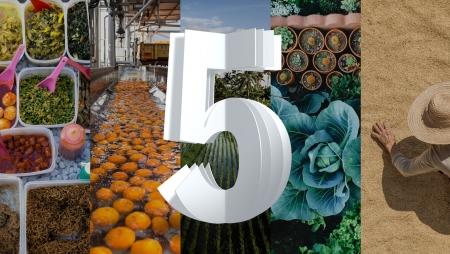 IBM apresenta as cinco inovações para os próximos cinco anos