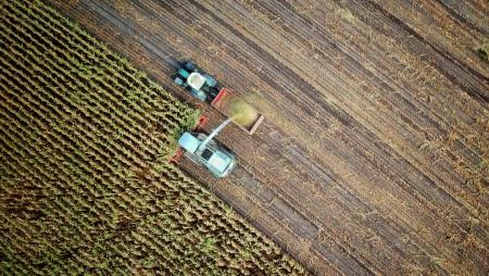 IBM lança serviços digitais para agricultores