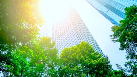 Cinco estratégias de sustentabilidade que todos os CEO deveriam adotar