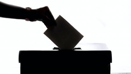 Votação eletrónica tem vindo a crescer