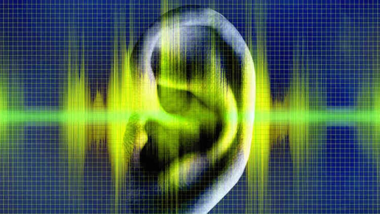 Tecnologia biométrica permite identificação de pessoas através do som