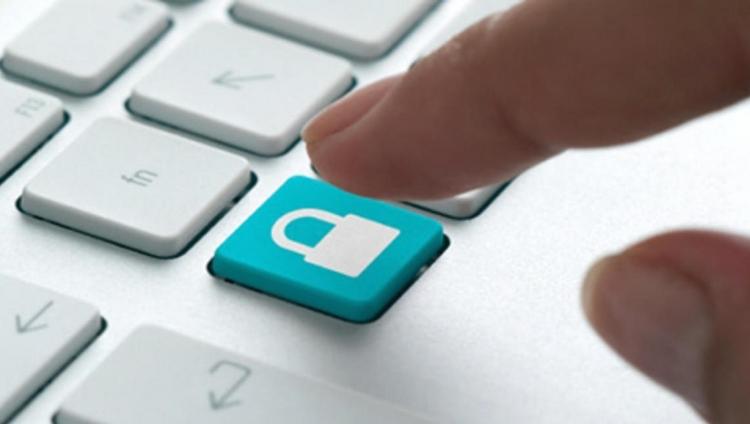 Cibersegurança: CIOs devem investir na educação dos colaboradores
